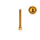 Schraube für den rechten Seitendeckel Gold